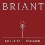 BRIANT
